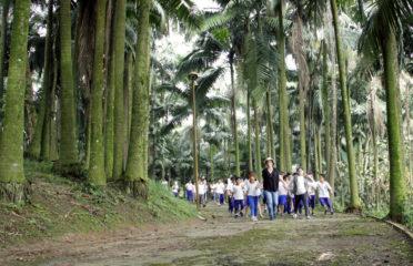Parque Pérola da Serra