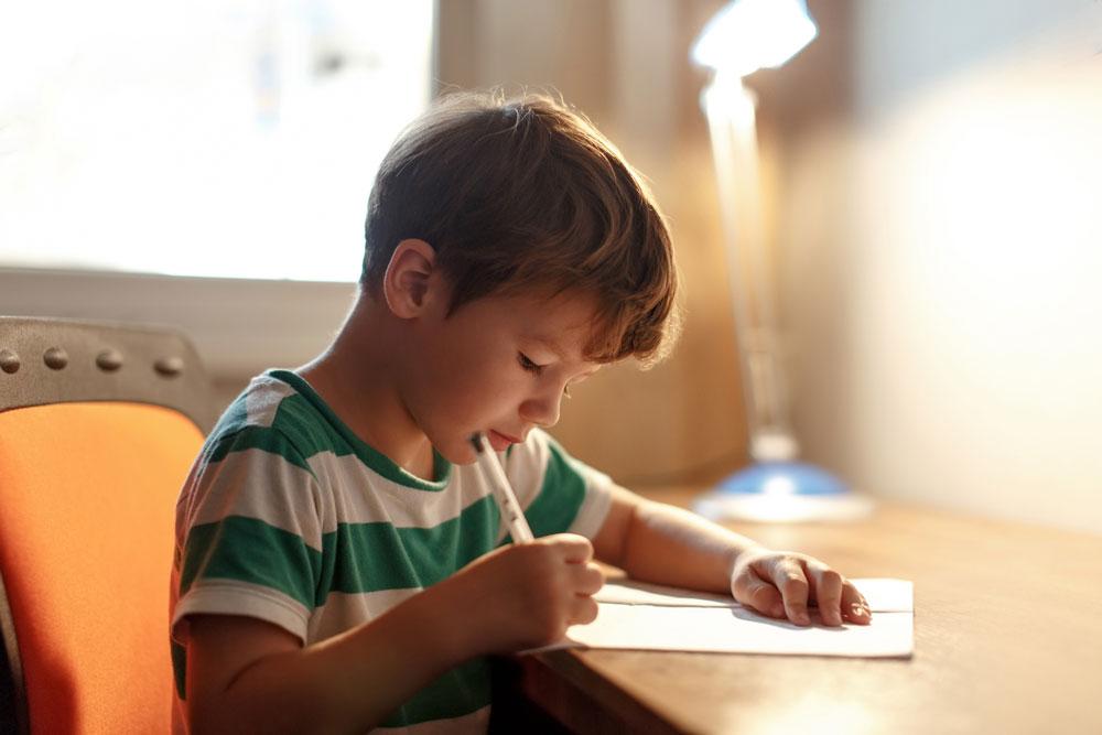 Criança lendo escrevendo livro Vipzinho