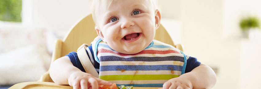 Baby-Led Weaning no Portal Vipzinho