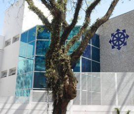 Colégio Singular
