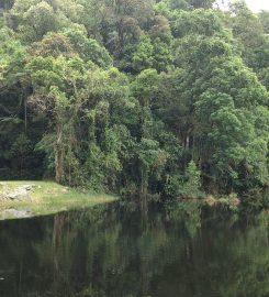 Parque Estadual Cantareira