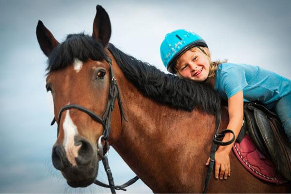 passeio a cavalo no vipzinho