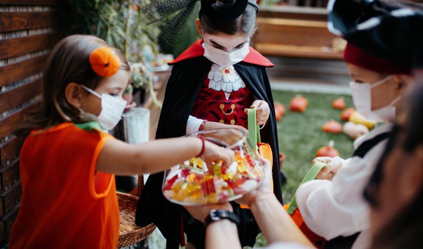 circuito Shopping de São Paulo, promove Caça aos Doces Divertida no Halloween - Portal Vipzinho