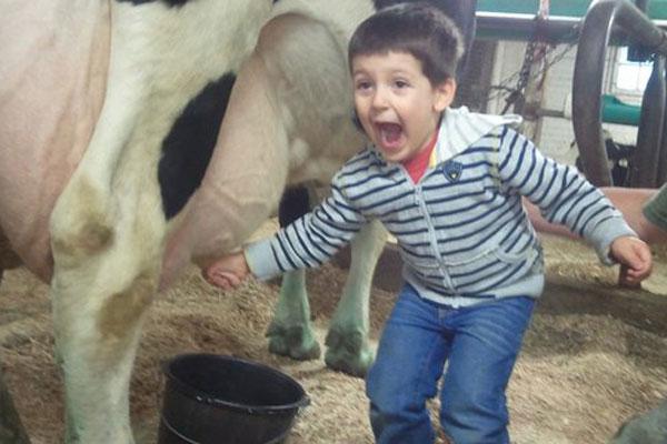 fazendinha com oficina de leite do adventree no vipzinho