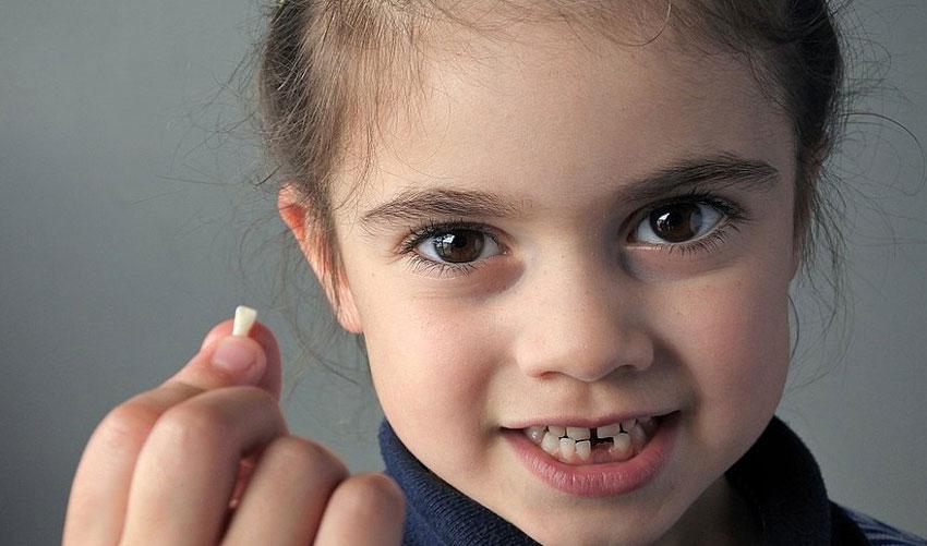 fada do dente para as crianças no vipzinho