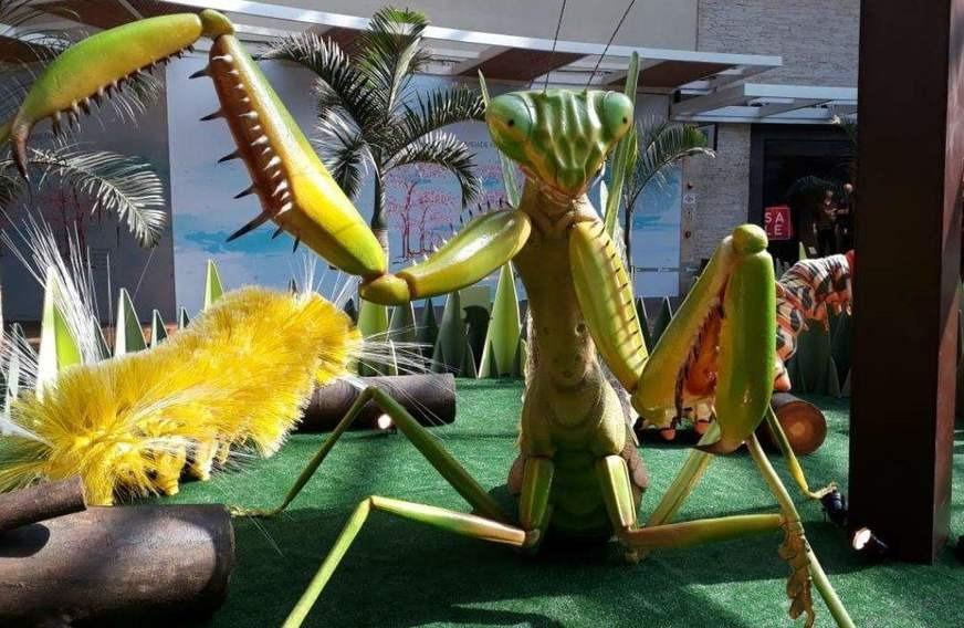 insetos gigantes no shopping com vipzinho