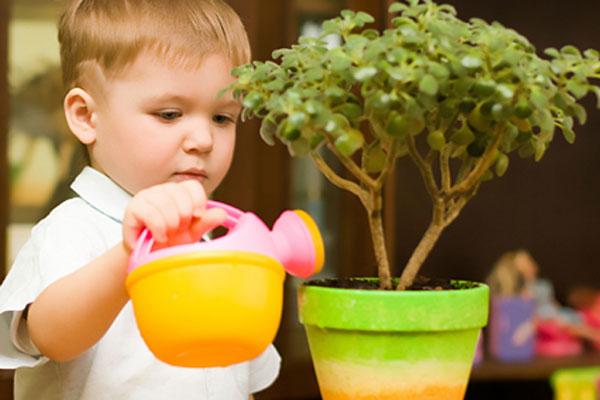 jardim sensorial no vipzinho
