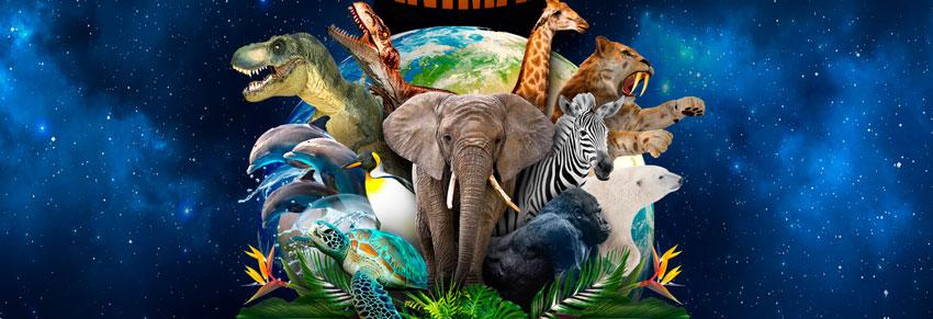 viagem ao mundo animal no vipzinho